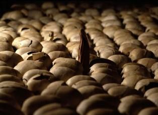 Rwanda genocide memorial centre Kigali