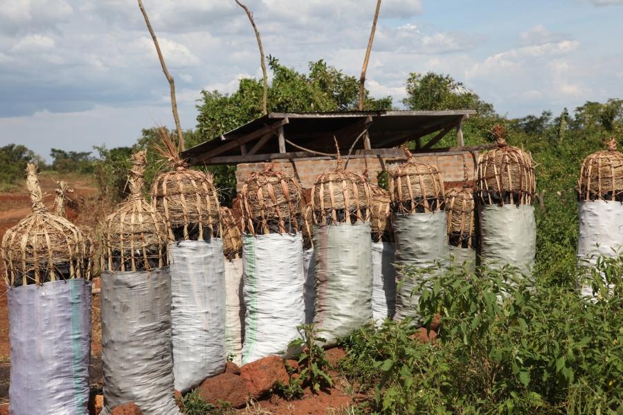 Northern Uganda: Day 5 - from Pakwach to Soroti (a road