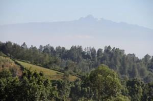 14.03.03 Loc  Mt Kenya (Large)