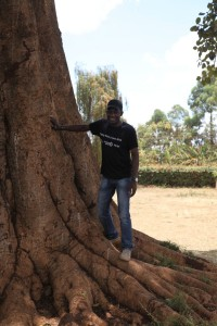 14.03.05 SW Nick and Tree (Large)